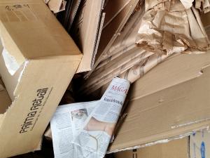 Papier&Karton - LiNDENBERGER Container und Entsorgungsservice